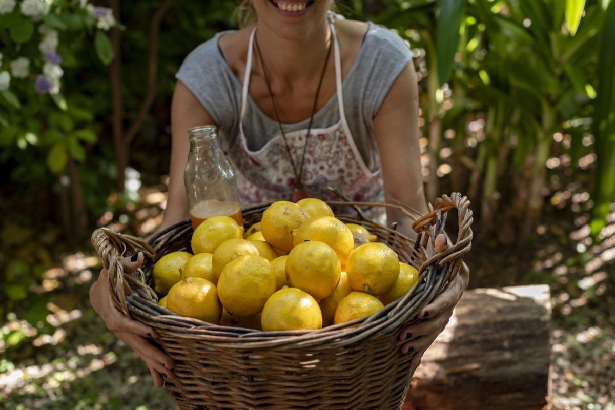 ¿Cuál es la mejor calidad de los limones?