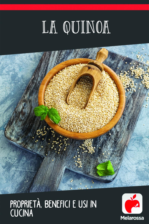 Usos de las propiedades beneficiosas de la quinua en la cocina