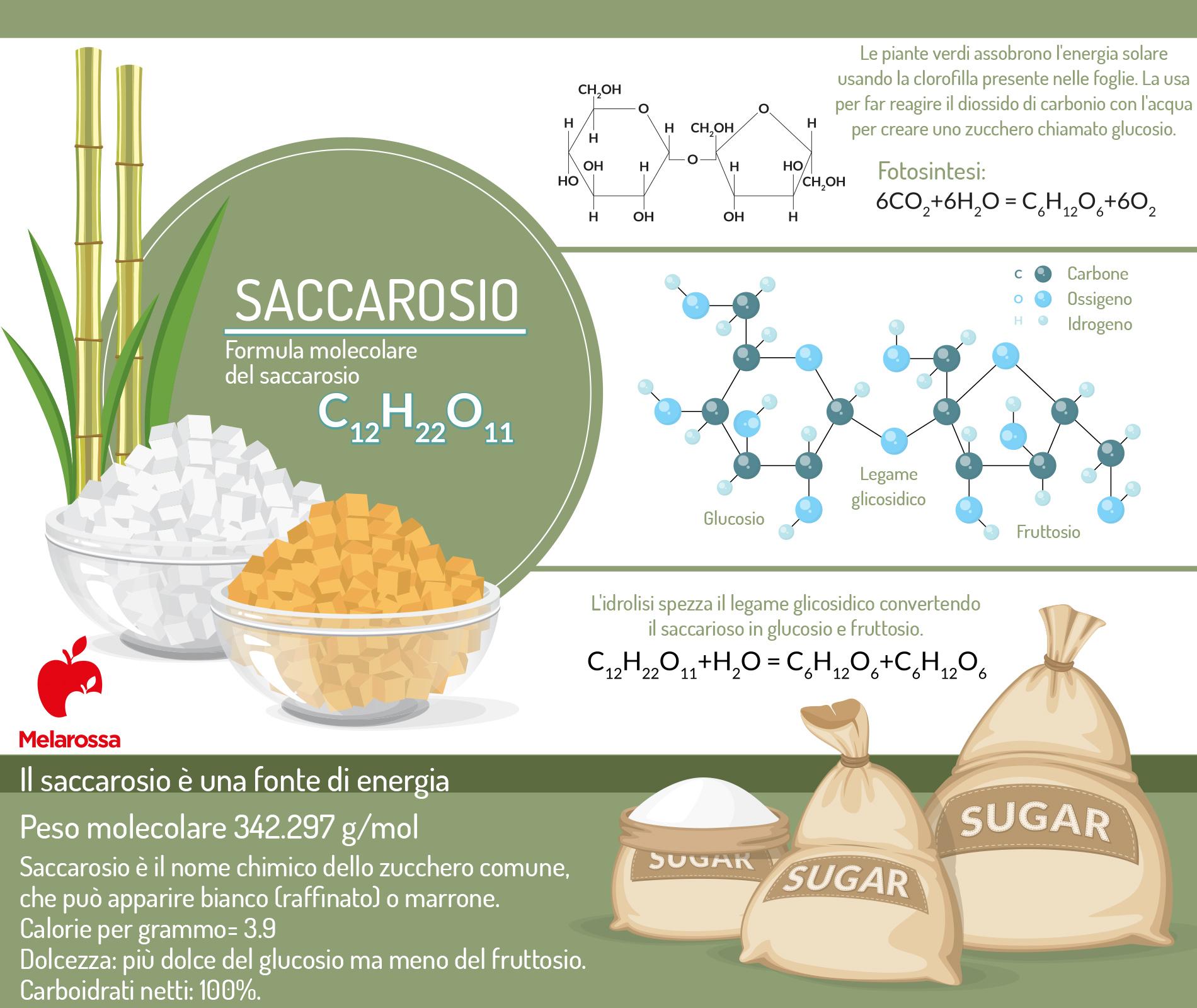 sacarosa química